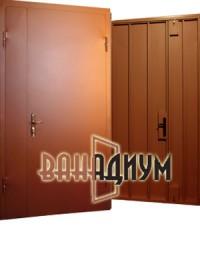 Дверь тамбурная (Покрас НЦ + скилет) дт 10.